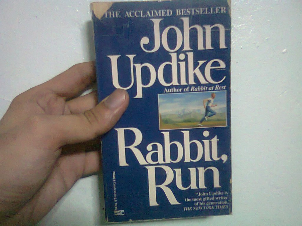 critical essay on rabbit run Water shows up repeatedly in rabbit, run and updike really works it when rabbit first runs, he wants to go to the ocean here water takes on the classic meaning: rebirth.